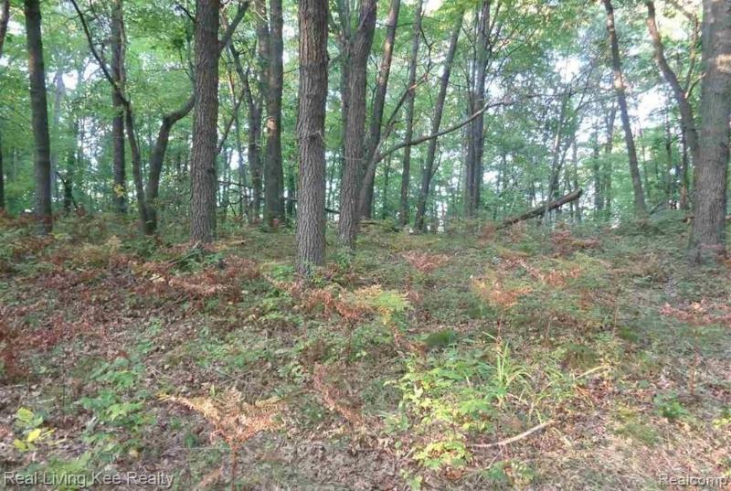 Listing Photo for Lots 18, 19, 20 Mary Anne Ln
