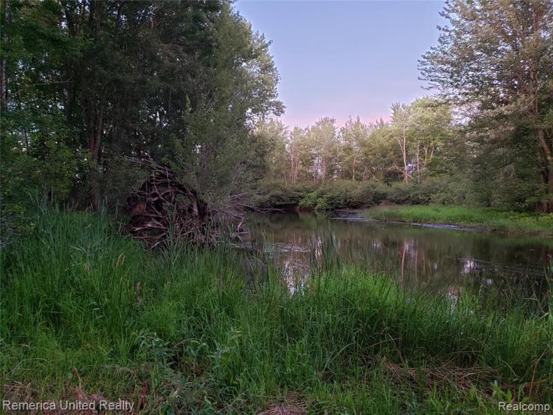 Listing Photo for 1062 Calcut - Parcel D