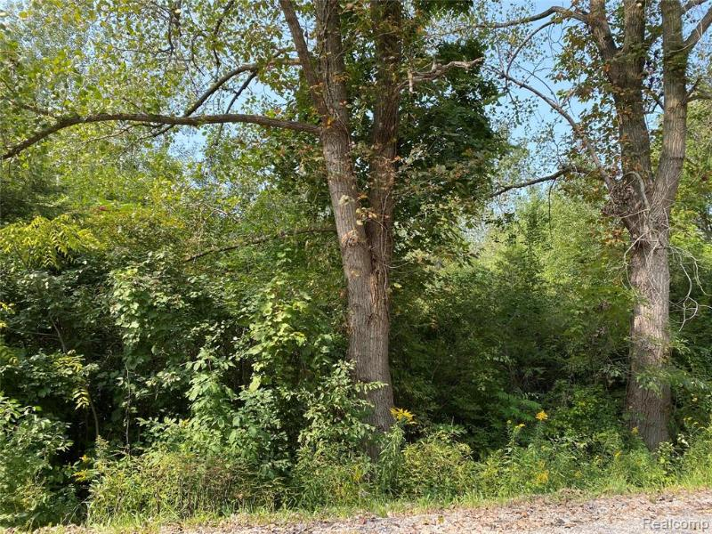 Listing Photo for 0000 Timbers Rd