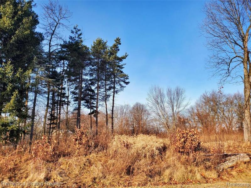 Listing Photo for Lot 2 Oak Forest Dr