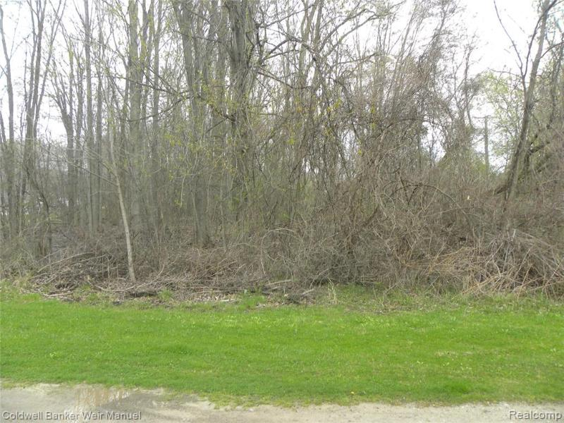 Listing Photo for 0000 Whittaker Rd