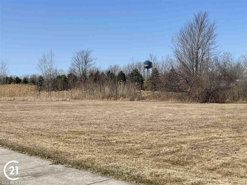 Listing Photo for 0 Orchard Lot 1