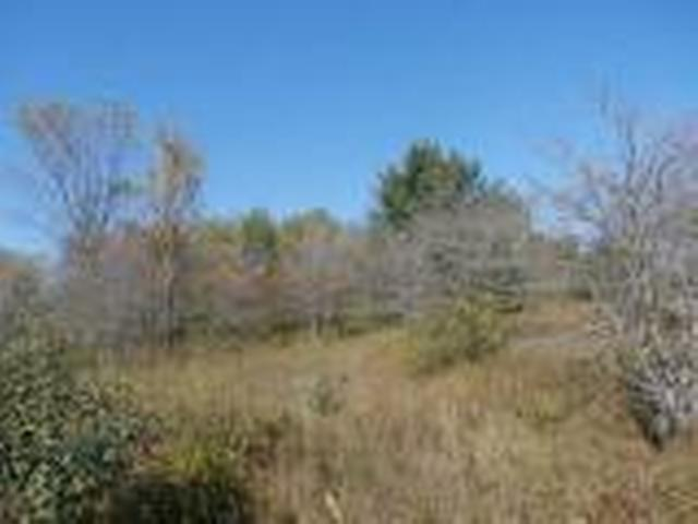 Listing Photo for Lot 245 LINKSVIEW WAY
