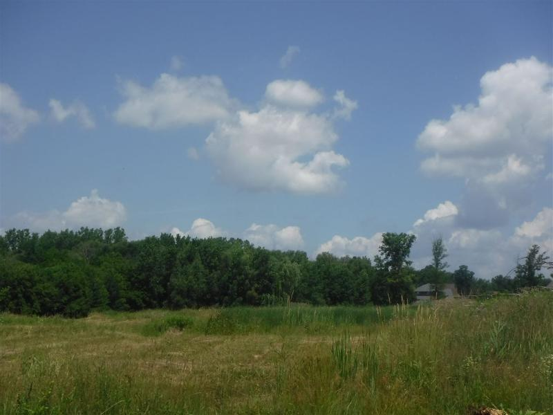 Listing Photo for 19268 Springbrook Drive,  Lot #165