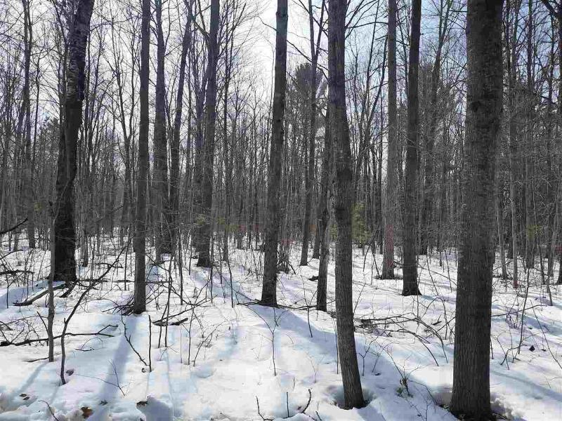 Listing Photo for 0 Henderson Lake Rd