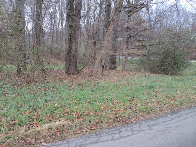 Listing Photo for 0000 Singer Lake Road