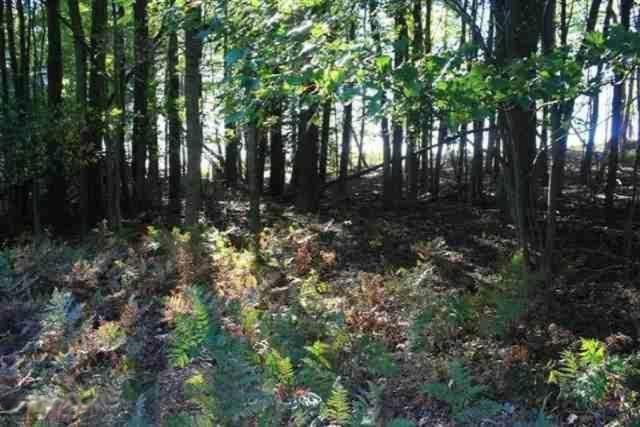 Listing Photo for Lot 9 W Fox Farm
