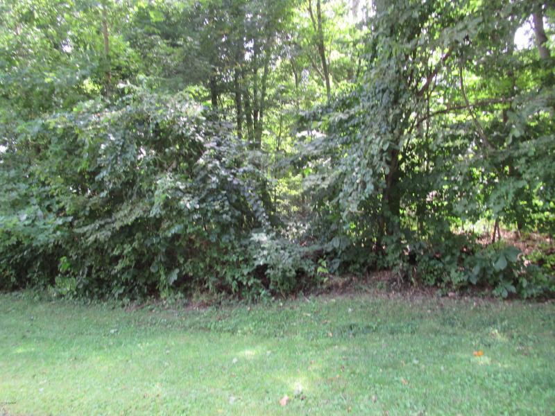 Listing Photo for Tract #2 Deep Woods Drive