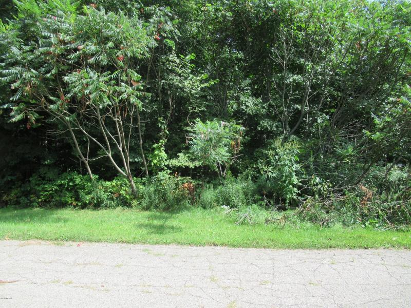 Listing Photo for Tract 3 Deep Woods Drive