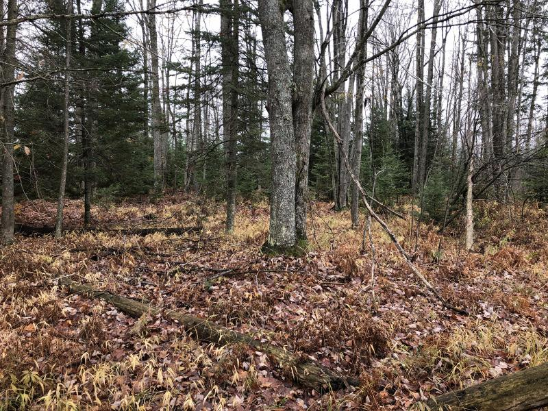 Listing Photo for 0 E Houghton Lake Road
