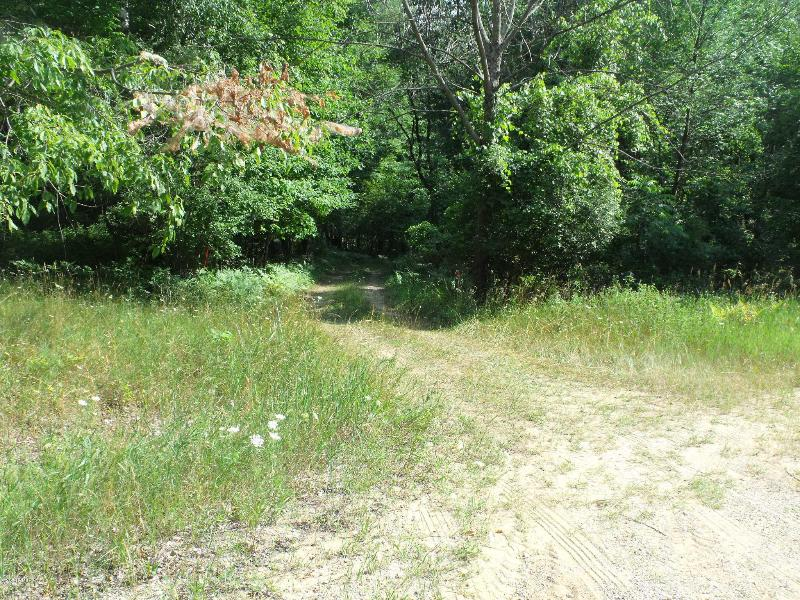 Listing Photo for lot 828 Pontiac Trail