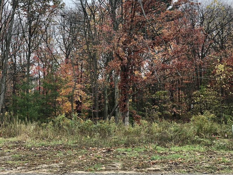 Listing Photo for Lot 74 Wickshire Place