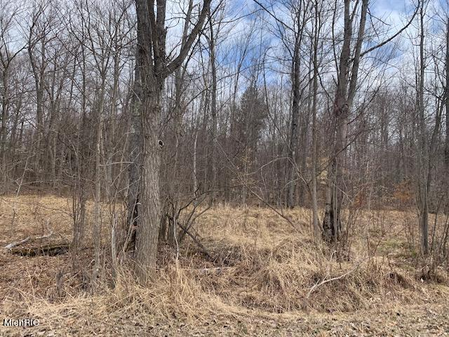Listing Photo for 28.5 Acres 220th Avenue