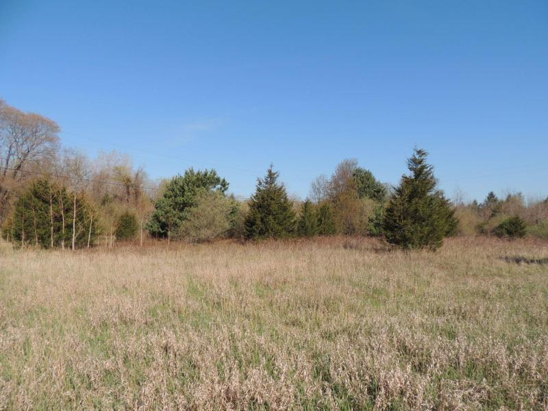 Listing Photo for Blue Star Highway Lot D