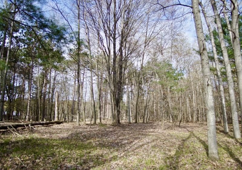 Listing Photo for Parcel C N Ridge Road
