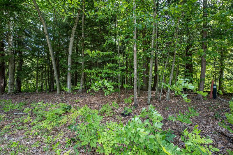 Listing Photo for Lot 34 Forest Lake Drive