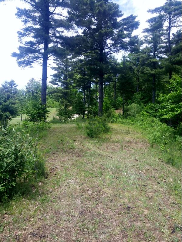 Listing Photo for Starlight Ridge Circle Lot 54