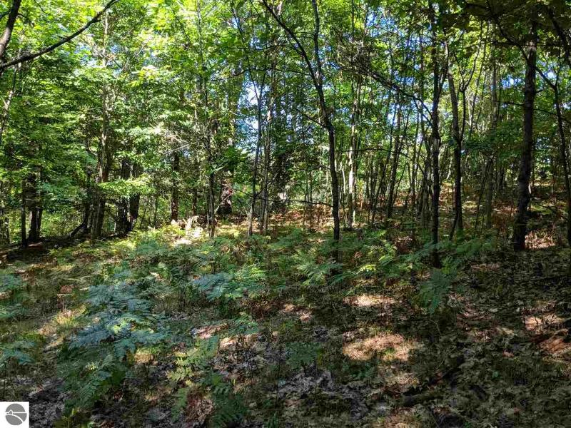 Listing Photo for 120 Acres Hunters Ridge