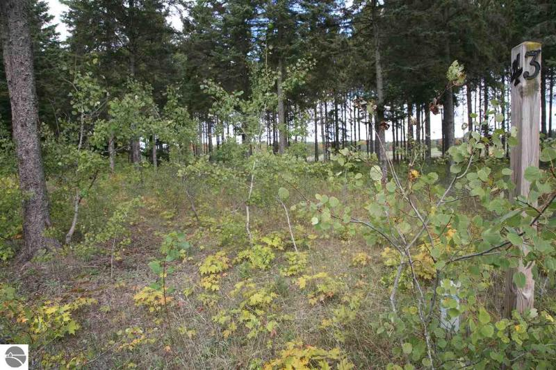 Listing Photo for 4 lot Scenic Woods Circle