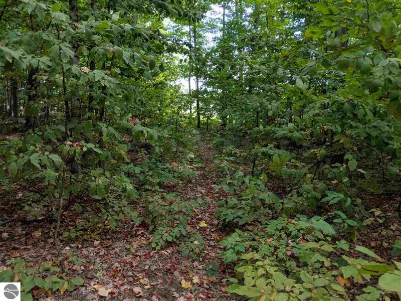 Listing Photo for 158 Acres S Plowman Road