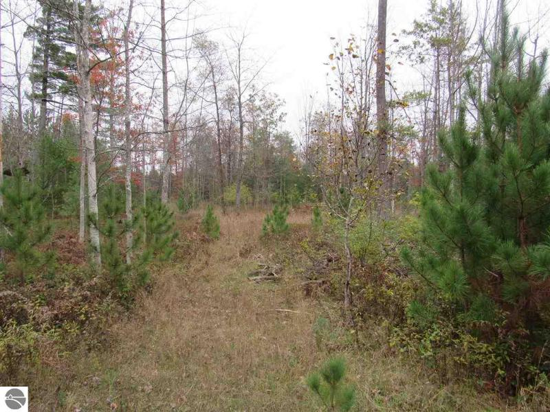 Listing Photo for xxx Pine Lodge