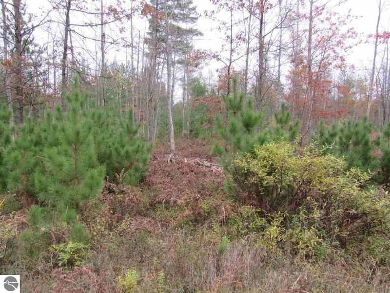 Listing Photo for 9 Pine Lodge