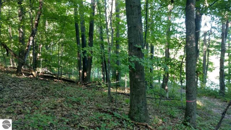 Listing Photo for Lot#1 Locust Street