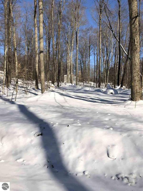 Listing Photo for Lot 29 Manistee Road