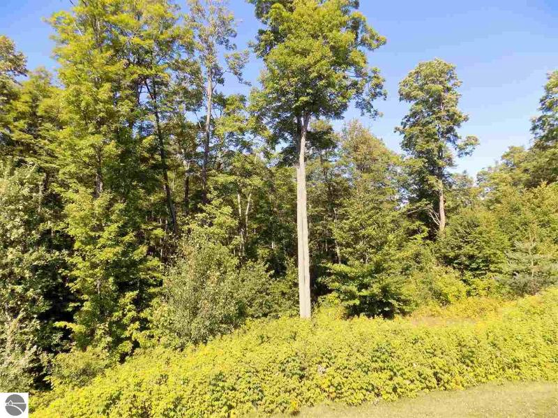 Listing Photo for Lot 186 Hawks Eye Drive