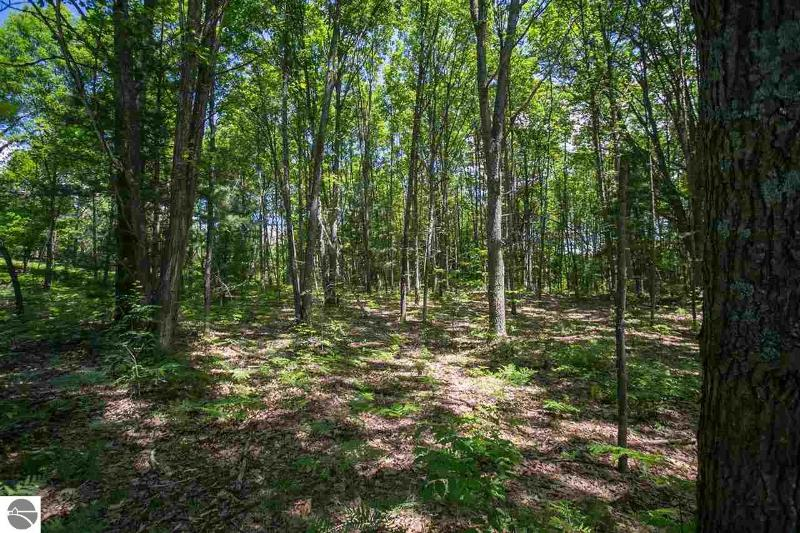 Listing Photo for Parcel 3 Yellow Birch Lane