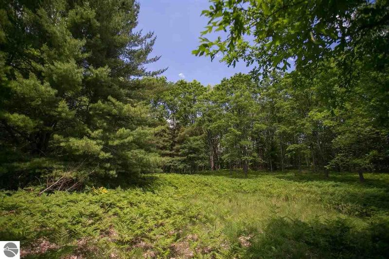 Listing Photo for Parcel 5 Yellow Birch Lane