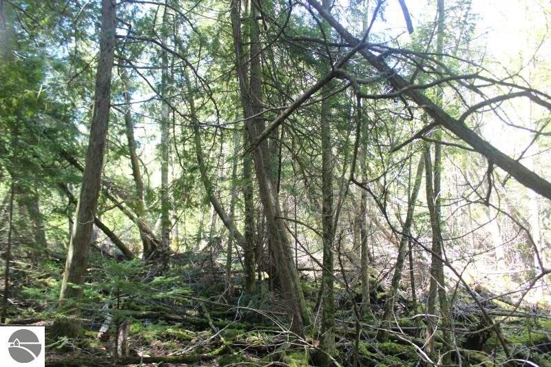 Listing Photo for Lot 266 N Forest Beach Shores