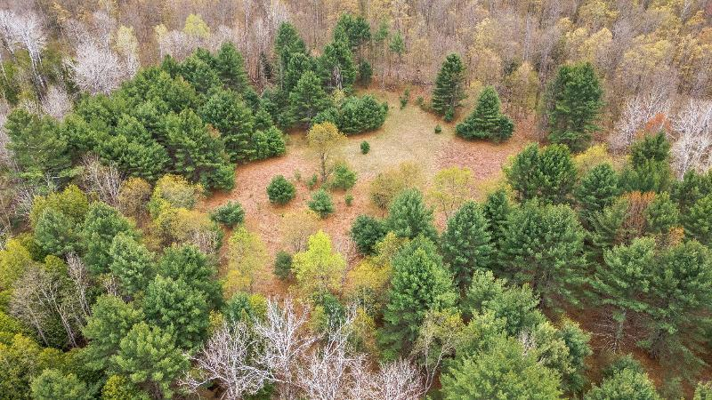 Listing Photo for 9297 Finch Creek Road