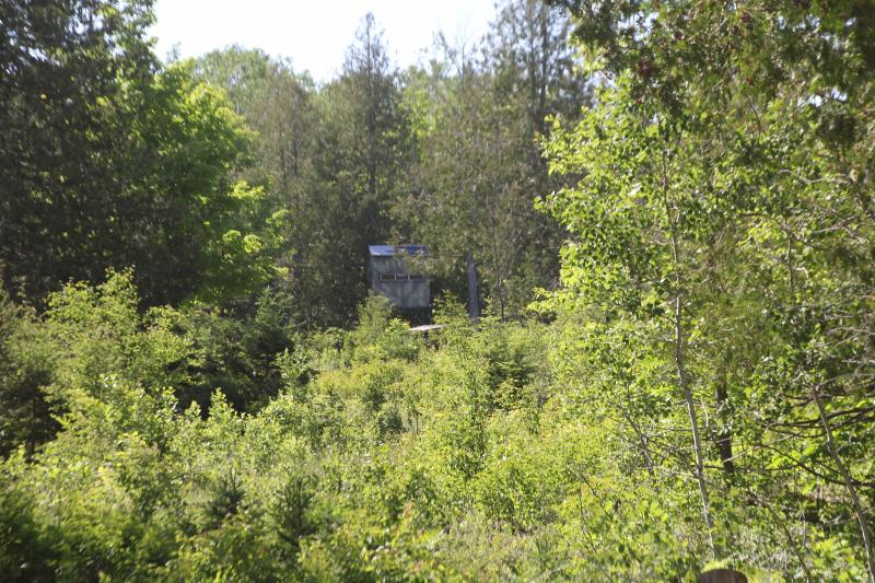 Listing Photo for 11685 Clinton Creek Road