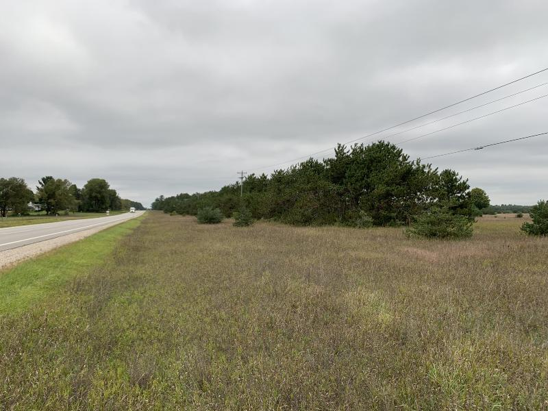 Listing Photo for 160 Acres N M-66